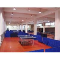 乒乓球场地地胶 场地标准尺寸