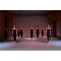 舞蹈地胶 专用舞蹈教室学院学校用舞蹈地面