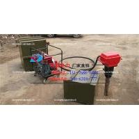 供应河北帝智生产曲轴打桩机便携式防汛抢险打桩机