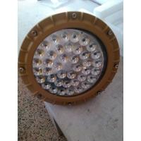 LED免维护防爆泛光灯/新黎明LED防爆投光灯