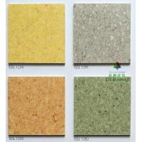 丽杰Rikett草原环保PVC卷材塑胶地板零甲醛地胶家装儿童