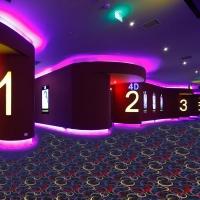高档电影院/办公室/会议室/走道尼龙印花地毯