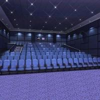 中档电影院/餐厅/KTV会所威尔顿羊毛地毯