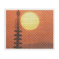 防蚊网 窗纱 防护网