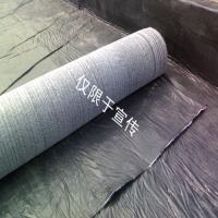 膨润土防水毯  路源防水毯价格 钠基防水毯