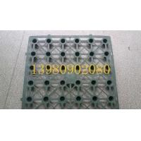 蓄排水板 塑料排水板  排水板价格型号 防水板厂家直销