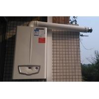 双功能(采暖、生活热水)燃气壁挂炉