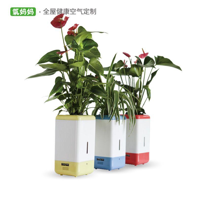 氧妈妈美肤e宝3B小型桌面植物负离子空气净化器