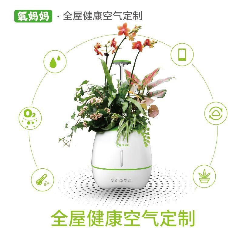 氧妈妈健康e宝生态植物空气净化器除甲醛制氧加湿氧吧体验智能A
