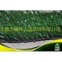 足球场人造草坪,网丝草,单丝草