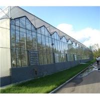 温室专用pc阳光板   优质pc阳光板