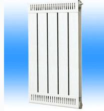 GLFH60-60/600-1.0型钢铝复合散热器钢铝复合柱