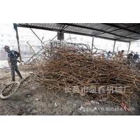 河南省高性价钢筋调直切断机供应|口碑好的钢筋调直机