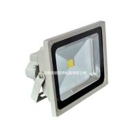 免维护LED泛光灯QC-FL010-B
