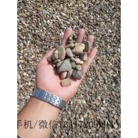 天然鹅卵石铺路 小型黄蜡石景石工程造景 广东英石
