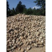 表面光滑鹅卵石 用于园景铺路 建筑装修 河滩改造
