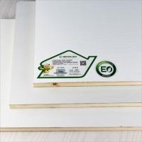 优质产品是生态板十大品牌精材艺匠发展的坚实基础