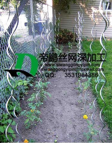 帝鹏丝网深加工植物螺旋支架