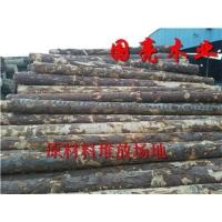 俄罗斯白松落叶原木桩 加工用材原木 按需分选
