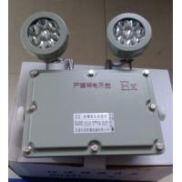 BAJ52防爆双头应急灯 LED防爆应急灯 防爆双头应急灯