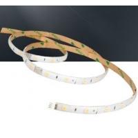 中赛LED软灯带  灯条 无暗区亮度可调4W 12W  阿克