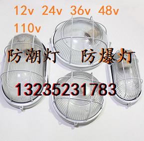 36V防潮灯 直流 交流12V 24V 48V三防灯 LED