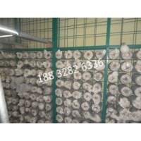 蘑菇种植用网片温室苗床网片
