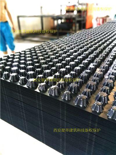 地下室专用PVC排水板