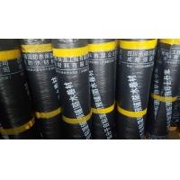 成都强国防水-自粘聚合物改性沥青防水卷材