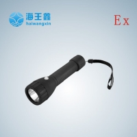 上海厂家供应轻便式防爆电筒,BAD206轻便式防爆电筒