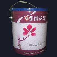 外墙氟碳漆FT系列 | 陕西西安紫荆花漆