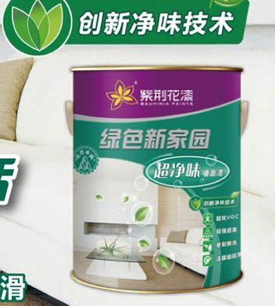 绿色新家园超净味墙面漆