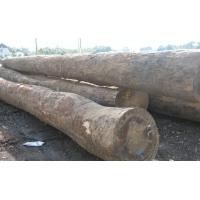 奥古曼板材20-90奥古曼原木
