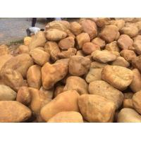 百石汇供应园林黄蜡石,黄石景观石,黄色石头批发