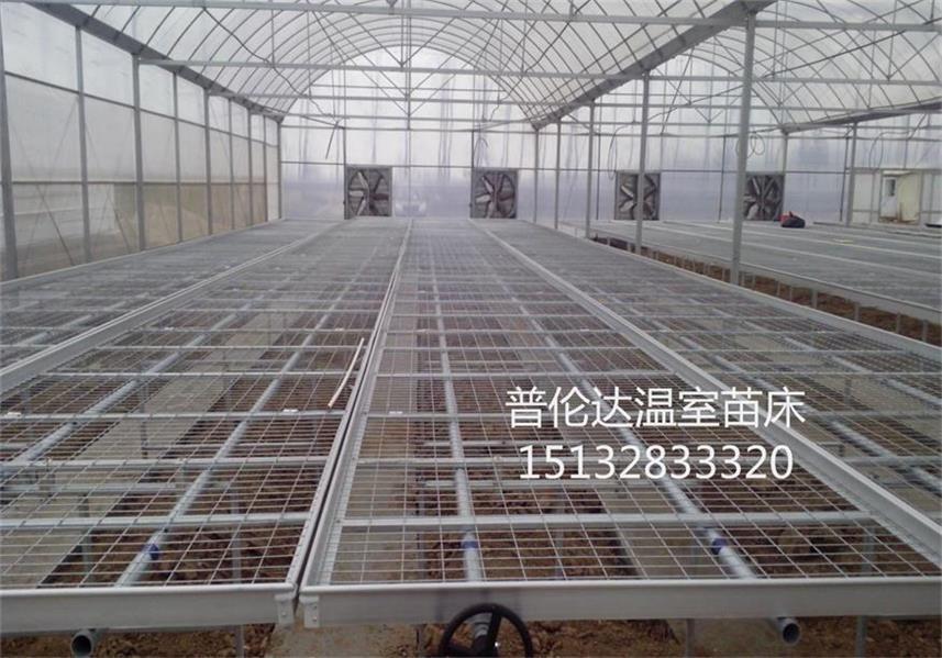 现货供应温室苗床 苗床网片,可生产定做各种规格苗床 苗床网