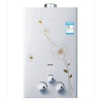 钻石厨卫-热水器1001C