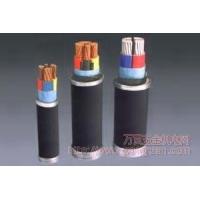 西南成都成塑铜芯固定敷设阻燃电力电缆 成塑高低压电线电缆