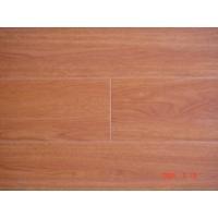 TL304亚洲枫木