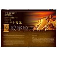 威宇经典铜装饰铜拉手系列比达利铜拉手002