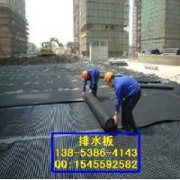 排水板 聚乙烯排水板