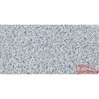 300x600花岗岩耐酸耐碱耐腐蚀通体外墙砖