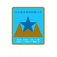 山东蓝星清洗防腐公司