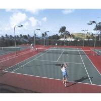 旗帜社桑拿-网球、壁球系列
