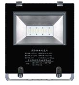 LZY3201   LED泛光灯