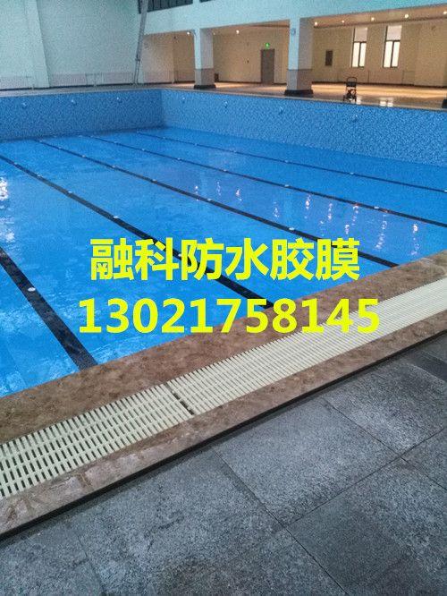 1 PVC泳池装饰胶膜主要成份为 -供应防水胶膜 融科胶膜