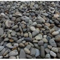 鹅卵石,砾石,景观石