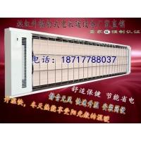 甘肃省商用壁挂式电暖气 健身房加热电采暖设备 SRJF-X-