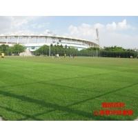 福州人造草坪工程造价pvc人造草坪户外地板