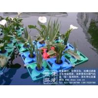 水上绿化专用浮板