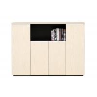 西安办公文件柜-AHG-209文件柜